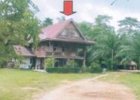 บ้านเดี่ยวหลุดจำนอง ธ.ธนาคารอาคารสงเคราะห์ ตรัง ห้วยยอด บางกุ้ง