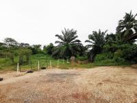 ที่ดินเปล่าหลุดจำนอง ธ.ธนาคารทหารไทยธนชาต ตรัง ห้วยยอด ห้วยยอด